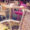 La mitad de las terrazas de Madrid facturan un 20% más gracias al buen tiempo y la Ley Antitabaco - La Viña