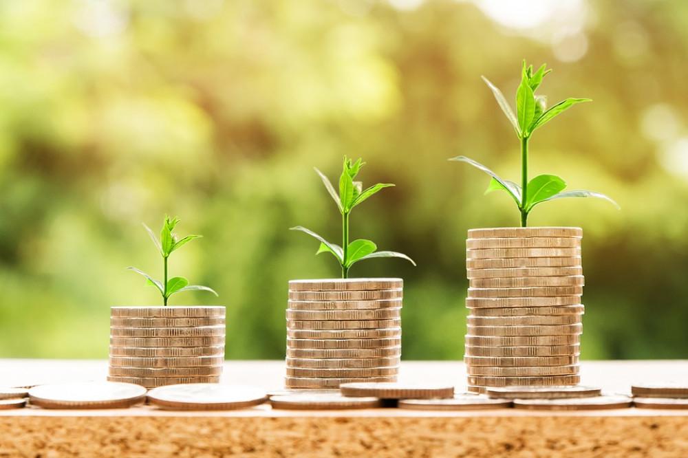 Aprobado el Salario Mínimo Interprofesional para 2019 en 900 € - La Viña