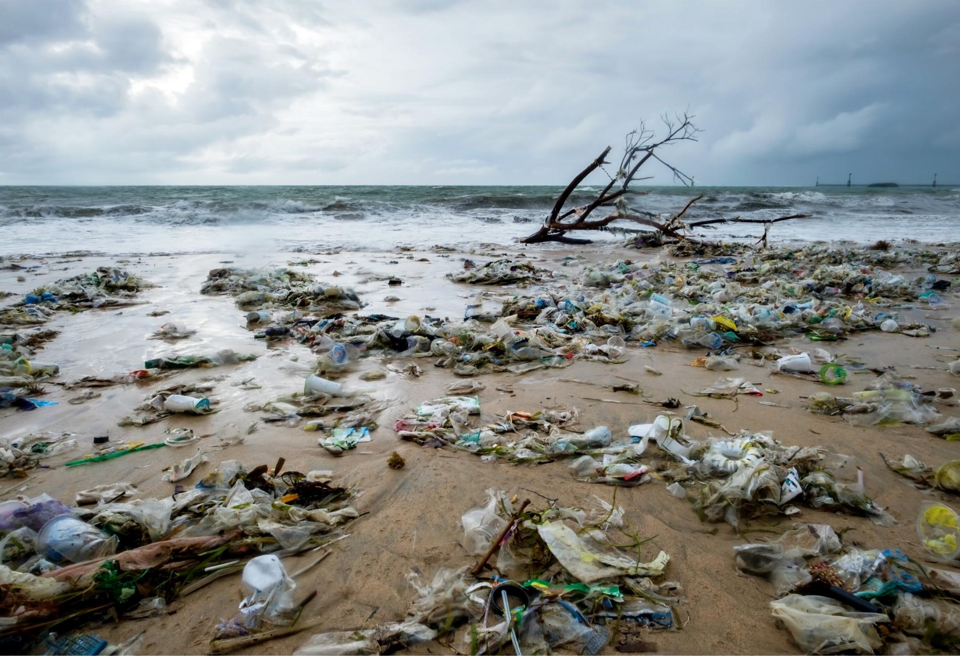 La normativa para reducir el plástico de un solo uso deberá aplicarse a partir de julio de 2021 - La Viña