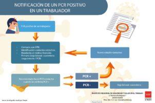 Cómo notificar un positivo por COVID a Sanidad - Hostelería Madrid