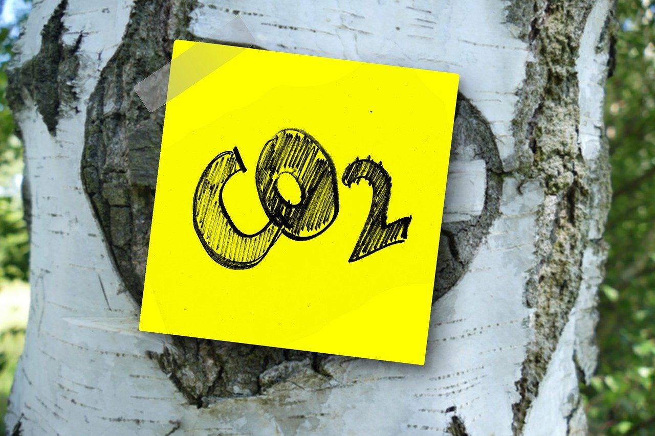 Díaz Ayuso plantea la instalación de medidores de CO2 en la hostelería - La Viña